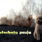 carmel_na_spacerze2_wlochata-pasja