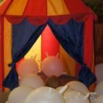 Labradoodle namiot